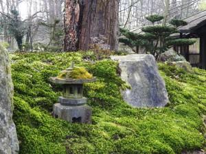 japangarten moos steine steinlaterne