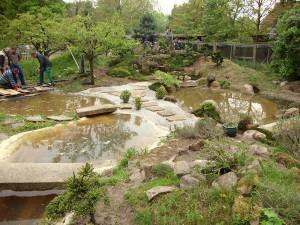 Japan-Gartenseminar   kokeniwa japanische Gartengestaltung   Heiko Voß